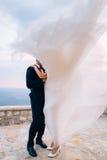 新娘和新郎在风 库存照片