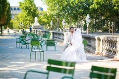 新娘和新郎在巴黎Tuileries庭院里  免版税库存图片