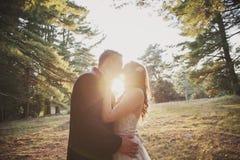 新娘和新郎太阳亲吻 库存照片
