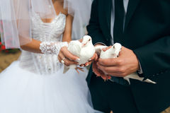 新娘和新郎拿着白色鸠 免版税库存照片