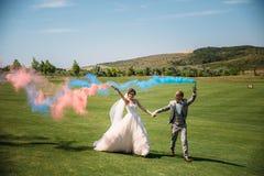 新娘和新郎用烟幕弹在一个领域与绿草 走户外婚礼之日的新婚佳偶 女孩 库存照片