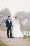 新娘和新郎由湖走 免版税库存图片