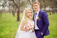 新娘和新郎的结婚照在春天从事园艺 库存图片