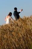 新娘和新郎 免版税图库摄影