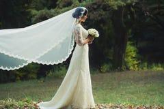 年轻新娘在森林里 库存图片