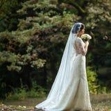 年轻新娘在森林里 免版税库存图片