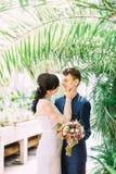 新娘在植物园里抚摸微笑的新郎的面颊在棕榈树上的 图库摄影