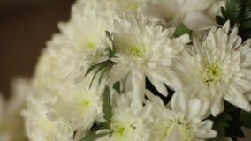 新娘婚礼花束和夏威夷列伊在屋子里缠绕做白色兰花在桌 没有人民 在滑子的照相机 影视素材