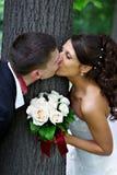 新娘新郎愉快的亲吻 库存照片