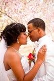 新娘日新郎他们的婚礼 免版税库存图片