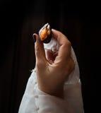 新娘有拿着李子的一块白色布的` s手 免版税库存照片