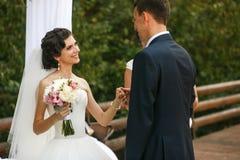 新娘服装新郎的一个扣眼 库存图片