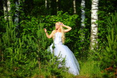 新娘木头 免版税库存照片