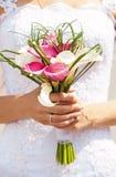 新娘水芋属藏品花束特写镜头视图  免版税库存图片
