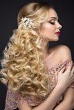 新娘的图象的美丽的白肤金发的女孩有婚礼辅助部件的 免版税库存图片