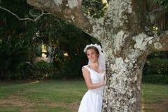 新娘的秀丽 库存图片