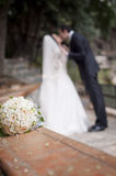 新娘的花 免版税库存图片