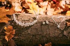 新娘的辅助部件以树干和秋天叶子为背景 附庸风雅 秋天婚礼概念 免版税库存图片