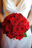 新娘红色玫瑰 库存照片