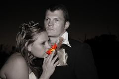 新娘花嗅到 库存照片