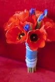 新娘花束 郁金香和虹膜 库存图片