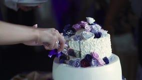 新娘蛋糕剪切新郎婚礼 影视素材
