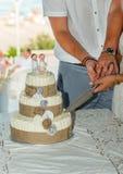 新娘蛋糕剪切新郎 图库摄影
