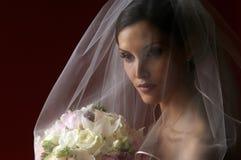 新娘表达式 库存照片