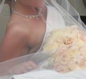 新娘详细资料 图库摄影