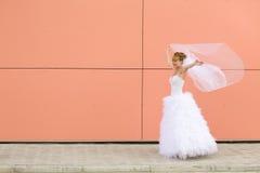 新娘跳舞 库存图片