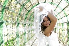 新娘逗人喜爱的摆在的面纱年轻人 免版税库存照片