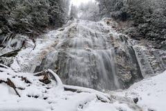 新娘面纱在冬天下跌省公园 免版税库存图片
