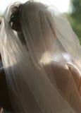 新娘面纱婚礼 免版税库存图片