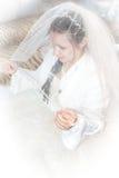 新娘面纱 免版税库存图片