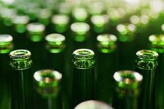 新娘 在制造的啤酒瓶 免版税库存图片