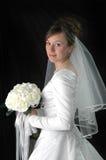 新娘 库存图片