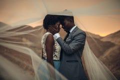 新婚佳偶在峡谷站立在新娘面纱下并且拥抱在日落 库存图片