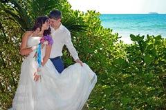 新婚佳偶美好的爱恋的夫妇是在海滩的立场 婚礼和蜜月在回归线在斯里兰卡的海岛上 免版税库存图片