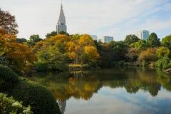 新宿Gyoen庭院 免版税库存照片