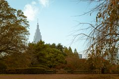 新宿Gyoen看法在秋天期间的,与一个高摩天大楼在背景中 免版税库存图片