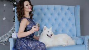 新年与宠物,典雅的衣裳的女孩的照相讲席会用在葡萄酒杯的香槟坐长沙发 影视素材