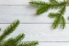 新年和圣诞节大模型-在白色木背景的冷杉分支 图库摄影