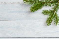 新年和圣诞节大模型-在白色木背景的冷杉分支 免版税库存图片