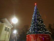 新年和Chhristmas树 免版税库存照片