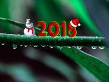 新年图片秀丽Resolution123 库存照片
