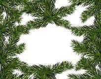新年圣诞节 一个圣诞树特写镜头的绿色分支在白色背景的 无缝的模式 免版税图库摄影