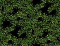 新年圣诞节 在黑暗的背景的绿色树枝特写镜头 无缝的模式 例证 库存照片