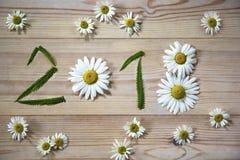 新年好2018年春黄菊花和绿草在木背景 免版税图库摄影