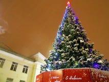 新年树在公园,多雪的天气 图库摄影