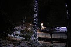 新年的照明设备在多瑙河公园,诺维萨德,塞尔维亚 库存图片